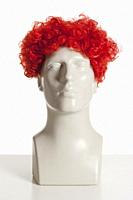 Mannequin Male Head with Wig on White.