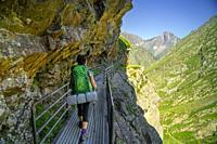 Footbridge over Caillouas gorge, louron, cordillera de los Pirineos, France.