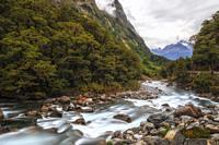 Falls Creek, Milford Sound, South Island, Fiordland, New Zealand.