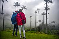 The Cocora Valley (Spanish: Valle de Cocora) is a valley in the department of QuindÃo, just outside the pretty little town of Salento, in the country ...
