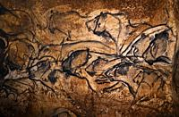 France, Ardeche. Chauvet cave.