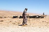 Bedouin herdsman along King's Highway, Jordan.