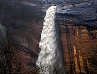 Heavy rains have produced ephemeral waterfalls at Zion National Park, Utah.