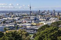 Auckland, North Island, New Zealand.