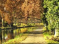 Canal de Garonne near Marmande in autumn, Lot-et-Garonne Department, Nouvelle Aquitaine, France.