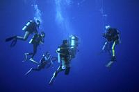 Group of diver making the safety stop just under the surface.