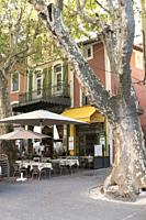 Ancient, rustling plane tree with mottled grey and white textures in the main square of L'Isle -sur-la-Sorgue, and fallen leaves claimed by the Mistra...