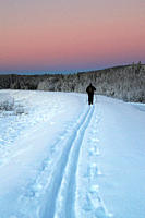 The tracks of a cross-country skier in the snow are leading into the distance at sunset on a cold winter day in rural Sweden.