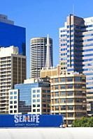 Sydney skyline, Darling Harbour, Sydney, New South Wales, Australia,.