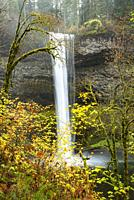 South Falls, Silver Falls State Park, Oregon.