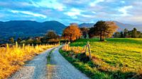 Trail, meadows and rural landscape near Ceceda village, Nava municipality, Asturias, Spain