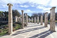 Garden,Jardins Joan Maragall and palace Albeniz,park montjuic,columns promenade Barcelona.