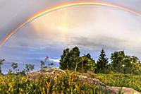 rainbow over the landscape of the Black Forest, Germany, typical bunter sandstone and bilberry bushes in foreground, mountain Schliffkopf.