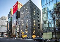 Japan, Tokyo City, Ginza District, Harumi Avenue.