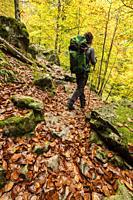 bosque de Bordes, valle de Valier -Riberot-, Parque Natural Regional de los Pirineos de Ariège, cordillera de los Pirineos, Francia.