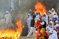 India, Rajasthan, Mukam, Jambeshwar festival, Bishnoi devotees in prayer before Havans or holy fires.