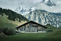 Lauterbrunnen is situated in one of the most impressive trough valleys in the Alps, between gigantic rock faces and mountain peaks. With its 72 thunde...