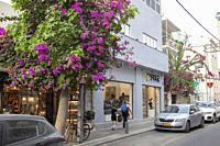 Shalom Shabazi Street in Neve Tzedek Neighbourhood in Tel Aviv, Israel.