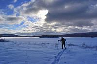 Cross country skier at the shore of a frozen lake