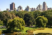 Central Park. In the vicinity of 65th Street is a grassy area called Sheep Meadow in which hundreds of people lie down in the summer months in the sun...