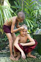 Myanmar (formerly Burma). Mon State. Mawlamyine (Moulmein). Gaungse Kyun, Shampoo island. Young monks shaving their heads