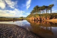 Tree's reflected in the River Otter at Budleigh Salterton in South East Devon, captured using a long shutter speed on an evening in early September.