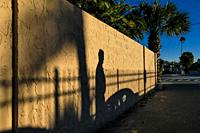 Sarasota, Florida USA A shadow of a man and a car on a back street.