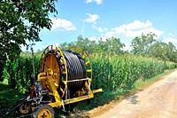 Water sprinkler installation in a field of maize.
