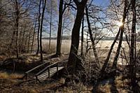 Winter landscape with frost.Bornsjön Botlyrka Sodermanland Sweden