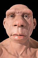 Life-sized Neanderthal bust at Montilla Local History Museum, Cordoba, Spain. Sculpted by JM Serrano.