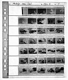Studio Tuinstraat, Tilburg, Netherlands. Old fashioned contact sheet of analog black & white film 1994-I, made from an LED Lightbox, using an iPhone S...