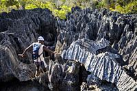 Tsingy de Bemaraha National Park. Madagascar, Africa.