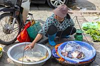Woman selling fresh fish from the pavement or sidewalk, Hanoi old quarter, Vietnam, Asia.