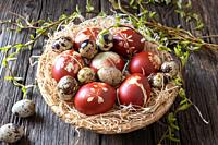 Quail and Easter eggs dyed with onion peels with a pattern of fresh herbs in a wicker basket.