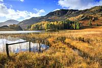 Blea Tarn near the top of the Langdale Pass in the Lake District National Park, captured on a morning in early November with Blake Rigg and the Conist...