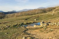 Source at The Zorreras meadows and Sierra Paramera on the background. Avila. Spain. Europe.