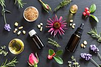 Bottles of essential oil with rosemary, thyme, creeping thyme, echinacea, wintergreen, lavender, myrrh, frankincense and rose buds on a dark backgroun...