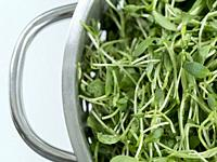 Close up overhead shot of washed fenugreek (Trigonella foenum-graecum) shoots and leaves draining in stainless steel strainer.