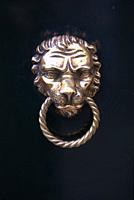 brass lion-head door knocker on black door, Venice, Italy.