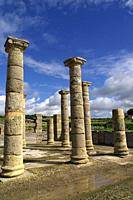 Rate (Spain). Columns of the forum of the Roman city of Baelo Claudia.