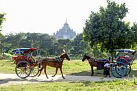 Myanmar (ex Birmanie). Bagan, Mandalay region. Horse-drawn carriage tourists.