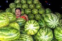 Myanmar (formerly Burma). Kayin State (Karen State). Hpa An. Watermelon merchant.