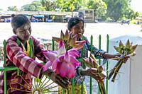 Myanmar (formerly Burma). Kayin State (Karen State). Hpa An. Saleswomen lotus flowers.