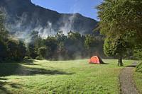 Morning mist at Camping Rio Gonzalez, Pumalin National Park, Patagonia, Region de los Lagos, Chile.