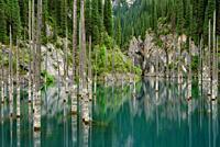 Kaindy lake, Kungey Alatau, Kazakhstan.