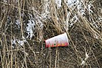 Canada, BC, Rock Creek. Discarded paper cup from fast food restaurant, on cold ground with frost on the long grass.