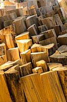 Canada, BC, Loon Lake. Chopped firewood.