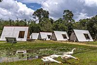 Sumiran Eco-Camp a multicultural rainforest mix eco-farm camp for all ages. Located in the Kuching City Batu Kawa Rantau Panjang, Sarawak, Malaysia.