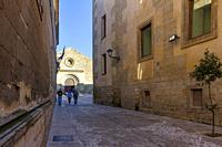 Baeza, Andalusia, Spain: View of one of the streets of the medieval center of Baeza with the Church of the Holy Cross in the background.