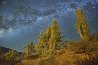 The Milky Way above the clear and dark sky above Pisco Elqui, Chile.